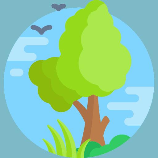 Realizzazione siti web a basso impatto ambientale